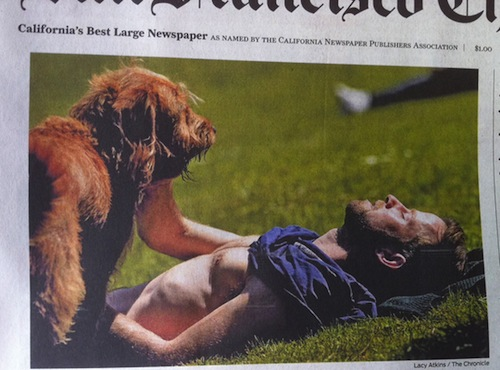 mild-bestiality-on-newspaper-front-page-13345-1306354878-21 (1)