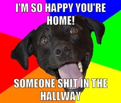 happy-youre-home