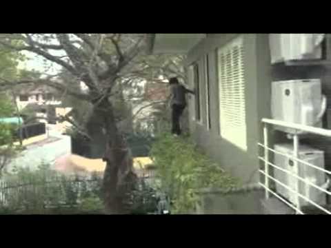 tree-jump-fail