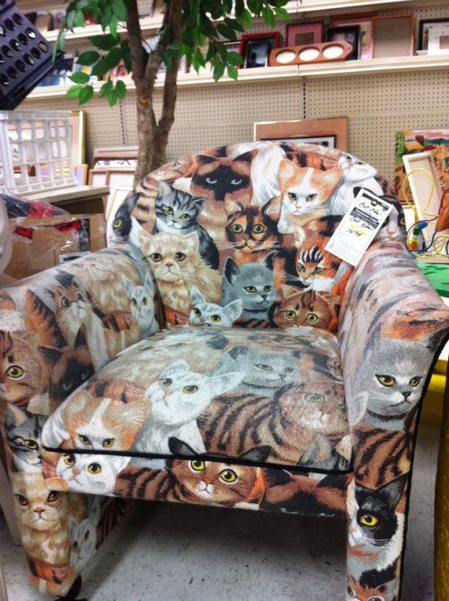 cat-chair
