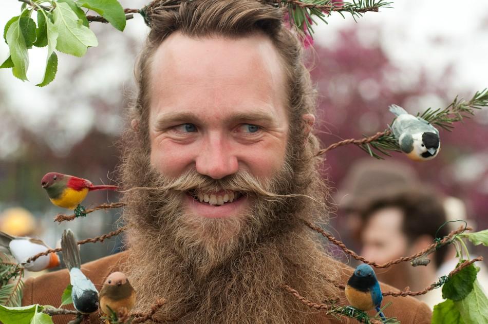 bird-beard