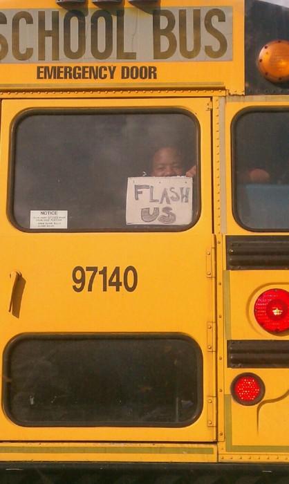 flashus-bus
