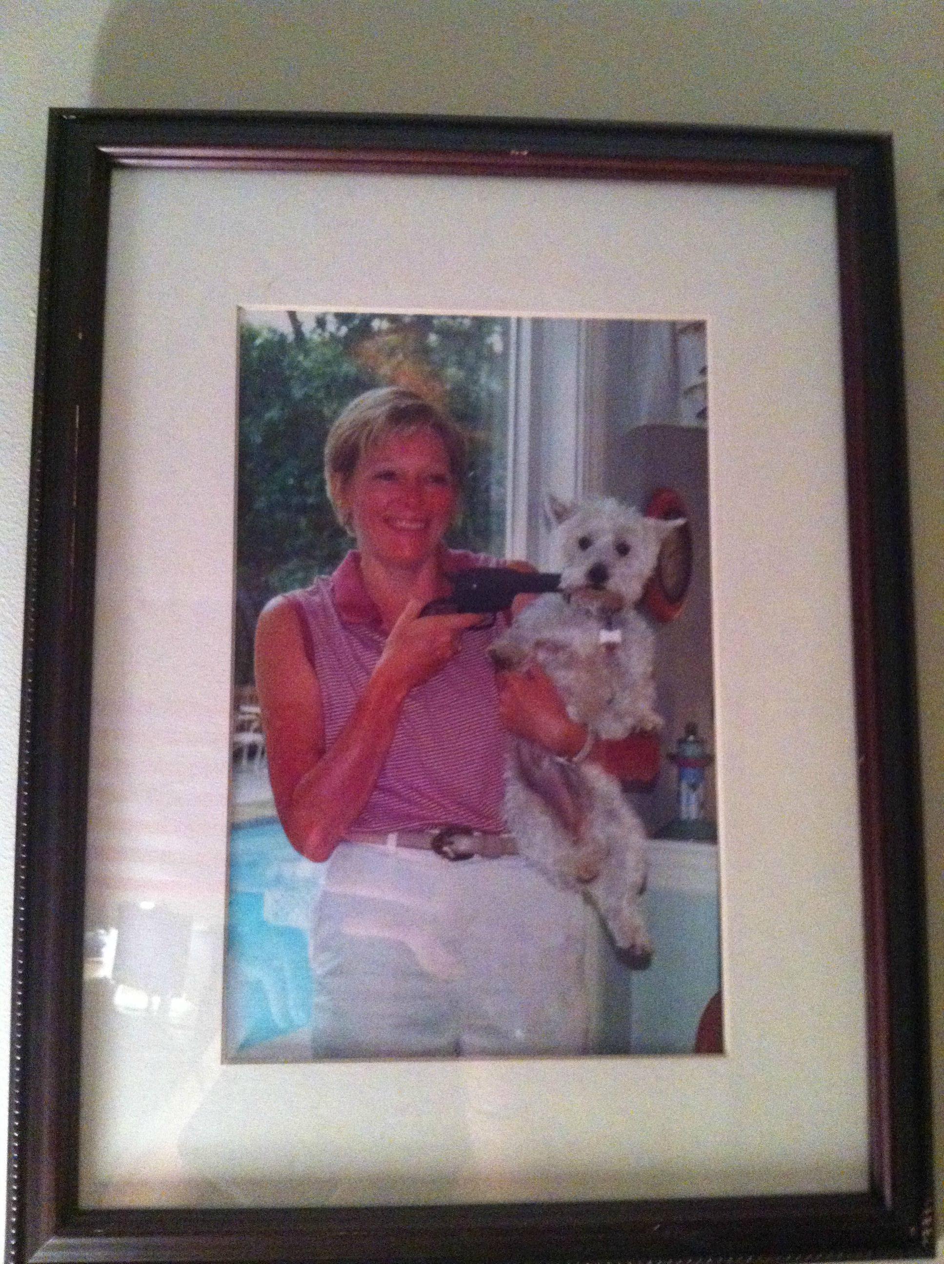 framed-dog-gun-picture