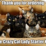 crazy-cat-lady-kit