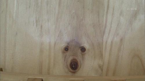 dog-wood-grain
